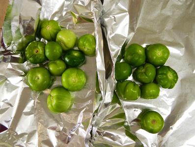 Chile verde pork stew