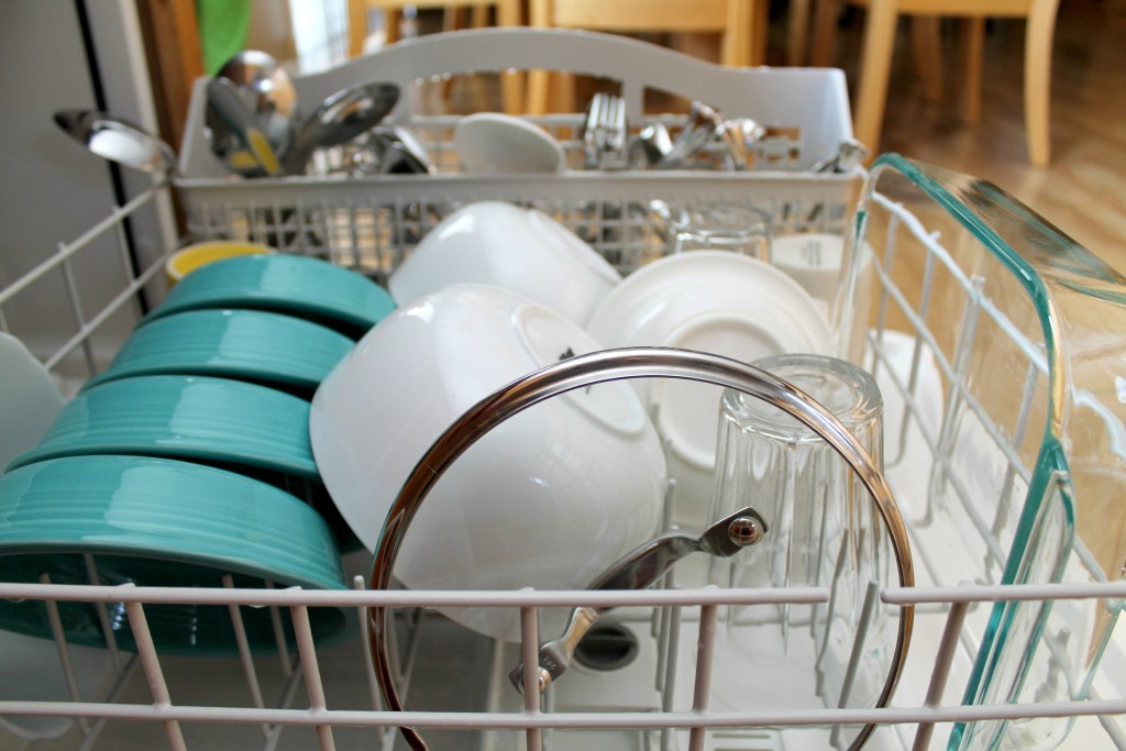 Dishwasher Myths 19