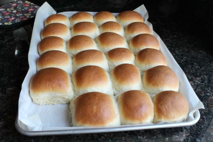 Homemade Butter Rolls